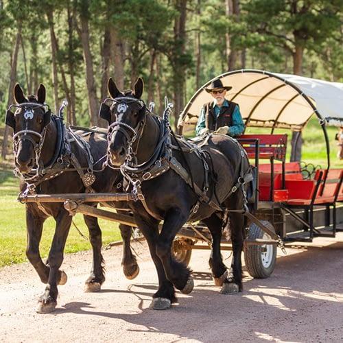 horsedrawn wagon